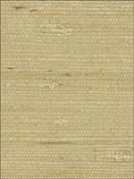 Grasscloth Wallpaper 6354724 by Kenneth James Wallpaper for sale at Wallpapers To Go