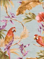 Parrots Tropical Wallpaper TR20205 by Seabrook Wallpaper for sale at Wallpapers To Go