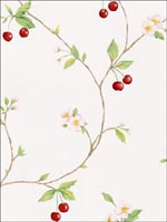 Cherries Wallpaper FK26957 by Norwall Wallpaper for sale at Wallpapers To Go