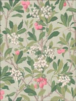 Strawberry Tree Pink and Duck Egg Wallpaper 10010048 by Cole and Son Wallpaper for sale at Wallpapers To Go