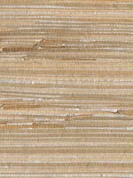 Tereza Silver Foil Grasscloth Wallpaper 262230272 by Kenneth James Wallpaper for sale at Wallpapers To Go