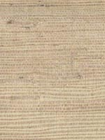 Kostya Beige Grasscloth Wallpaper 262265428 by Kenneth James Wallpaper for sale at Wallpapers To Go