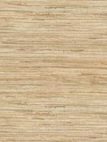 Daria Neutral Grasscloth Wallpaper 262265621 by Kenneth James Wallpaper for sale at Wallpapers To Go