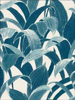 Leaves Tropical Wallpaper AI40302 by Seabrook Wallpaper for sale at Wallpapers To Go