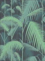 Palm Jungle Green Black Wallpaper 951003 by Cole and Son Wallpaper for sale at Wallpapers To Go