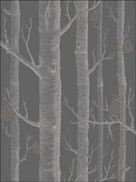 Woods and Pears Gilver Black Wallpaper 955031 by Cole and Son Wallpaper for sale at Wallpapers To Go