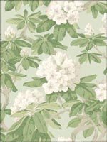 Bourlie Duck Egg Wallpaper 994022 by Cole and Son Wallpaper for sale at Wallpapers To Go