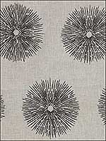 Sea Urchin Ivory Ebony Multipurpose Fabric GWF2809168 by Groundworks Fabrics for sale at Wallpapers To Go