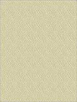 Jentry Shell Upholstery Fabric 279681116 by Kravet Fabrics for sale at Wallpapers To Go