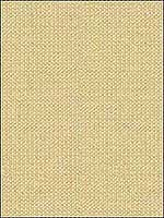 Wink Pearl Upholstery Fabric 3292016 by Kravet Fabrics for sale at Wallpapers To Go