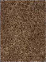 Lpadre Walnut Upholstery Fabric LPADREWALNUT by Kravet Fabrics for sale at Wallpapers To Go
