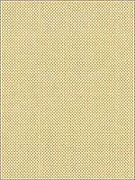 Jazzy Texture 1116 Upholstery Fabric 308381116 by Kravet Fabrics for sale at Wallpapers To Go