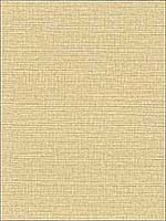Modern Linen Wallpaper CL1870 by 750 Home Wallpaper for sale at Wallpapers To Go