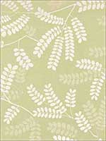 Locust Leaves Fern Fabric 62440 by Schumacher Fabrics for sale at Wallpapers To Go