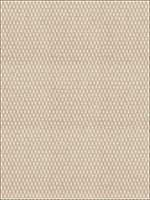 Edie Straw Fabric 5361308 by Stroheim Fabrics for sale at Wallpapers To Go