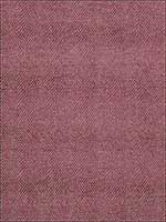 Sesame Berry Fabric 186906 by Fabricut Fabrics for sale at Wallpapers To Go
