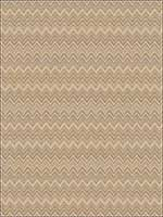 Agave Chamois Fabric 4642705 by Fabricut Fabrics for sale at Wallpapers To Go