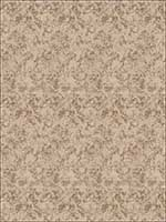 Moody Edge Fawn Fabric 5783201 by Fabricut Fabrics for sale at Wallpapers To Go