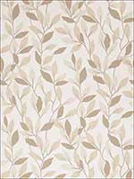50074W Jenny Vine Umber 01 Wallpaper 5995901 by Fabricut Wallpaper for sale at Wallpapers To Go