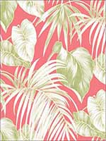 Dominica Wallpaper TA21601 by Seabrook Wallpaper for sale at Wallpapers To Go