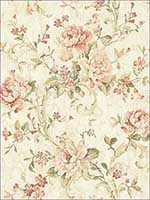 Antiqued Rose Peachy Wallpaper MV80401 by Wallquest Wallpaper for sale at Wallpapers To Go