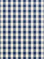 Crawford Gingham Marine Blue Fabric LCF66881F by Ralph Lauren Fabrics for sale at Wallpapers To Go