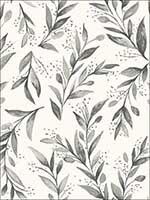 Olive Branch Charcoal Wallpaper ME1537 by York Wallpaper for sale at Wallpapers To Go