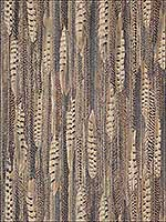 Animal Print Feathers Wallpaper 17960 by Astek Wallpaper for sale at Wallpapers To Go