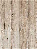 Driftwood Soft Tan Wallpaper 18293 by Astek Wallpaper for sale at Wallpapers To Go