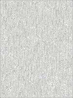 Cole Light Grey Winter Plain Wallpaper 276742031 by Brewster Wallpaper for sale at Wallpapers To Go