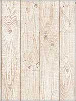Barn Board Beige Wallpaper CK36616 by Patton Norwall Wallpaper for sale at Wallpapers To Go