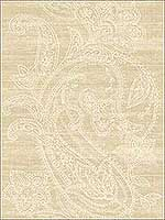 Paisley Striped Lace Filigree Tan and White Wallpaper 1620405 by Seabrook Wallpaper for sale at Wallpapers To Go