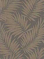 Edomina Dark Brown Palm Wallpaper 2814527575 by Advantage Wallpaper for sale at Wallpapers To Go