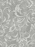 Leaf Scroll Plaster Metallic Wallpaper 2010100 by Seabrook Wallpaper for sale at Wallpapers To Go