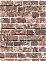 Distressed Red Brick Wallpaper NW31700 by Nextwall Wallpaper for sale at Wallpapers To Go