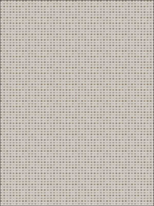 03156 Silver Fabric 4607505 by Trend Fabrics for sale at Wallpapers To Go