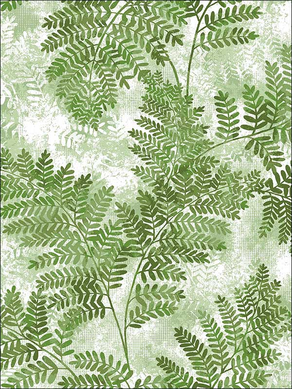 Cyathea Green Fern Wallpaper 2811LV04352 by Advantage Wallpaper for sale at Wallpapers To Go