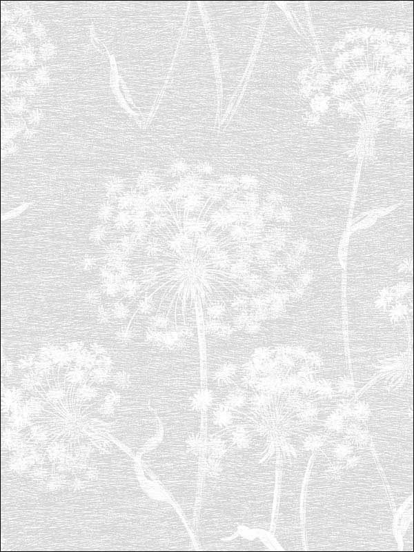 Garvey Light Grey Dandelion Wallpaper 281424575 by Advantage Wallpaper for sale at Wallpapers To Go