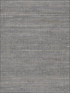 Pearl Coated Raw Jute Gray Wallpaper 488420 by Patton Wallpaper for sale at Wallpapers To Go