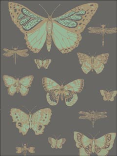 Butterflies and Dragonflies Green On Charcoal Wallpaper 10315067 by Cole and Son Wallpaper for sale at Wallpapers To Go