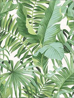 Alfresco Green Palm Leaf Wallpaper 274424136 by A Street Prints Wallpaper for sale at Wallpapers To Go