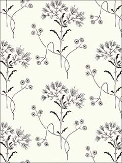 Wildflower Black on White Wallpaper ME1515 by York Wallpaper for sale at Wallpapers To Go