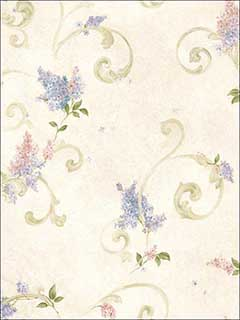 Celandine Cream Floral Scroll Wallpaper 276621601 by Brewster Wallpaper for sale at Wallpapers To Go