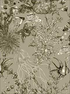 Bergen Grey Marine Life Wallpaper 28256390 by Engblad and Co Wallpaper for sale at Wallpapers To Go